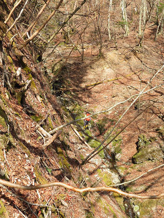 ツキノワグマ生息域と水晶転がる山域を散策 【奈良県・台高】3/21_d0387443_10161741.jpg