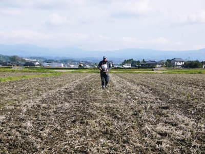 熊本県菊池市七城町の「砂田のこだわりれんげ米」残りわずか!ご注文はお急ぎ下さい‼_a0254656_16515718.jpg