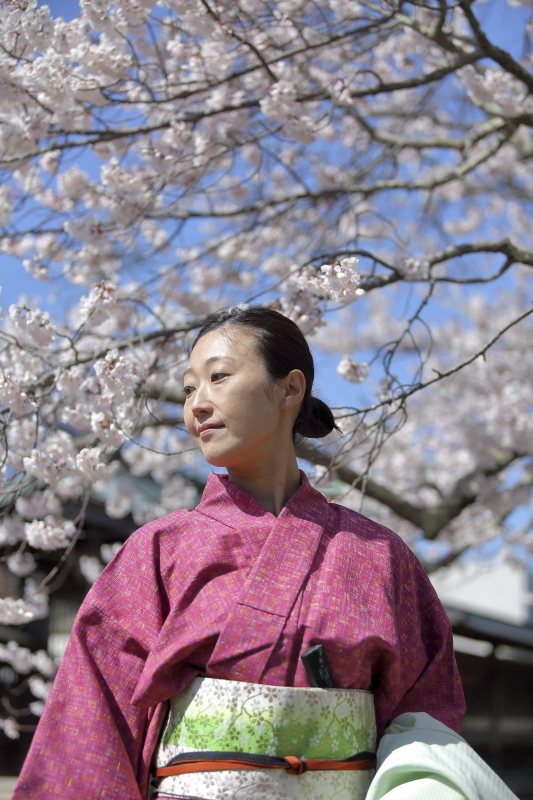 嘉明桜とくノ一_c0196076_08095620.jpg