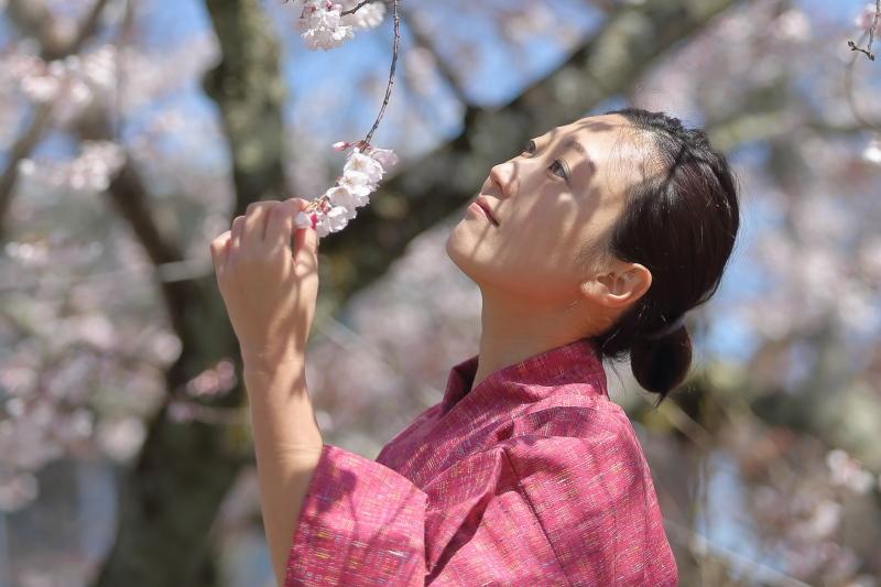 嘉明桜とくノ一_c0196076_13470626.jpg