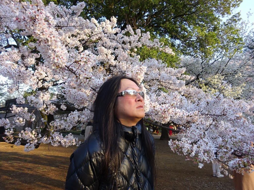 新宿御苑の色んな種類の桜_d0061678_08370620.jpg