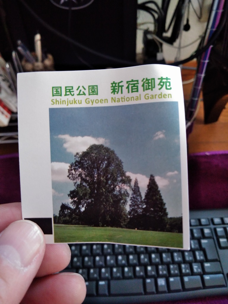 新宿御苑の色んな種類の桜_d0061678_11181553.jpg
