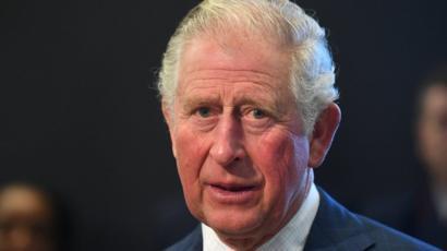 英皇室内でバイオテロを起こしましたか、DS裏社会の諸君?-チャールズ皇太子が新型コロナウイルス陽性、女王は体調良好。_a0384779_00081849.jpg