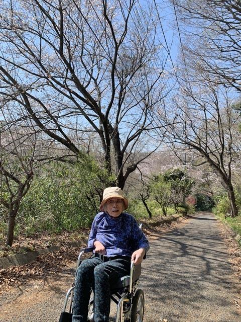 桜散歩_e0133780_21320014.jpg