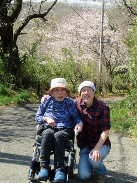 桜散歩_e0133780_21342405.jpg