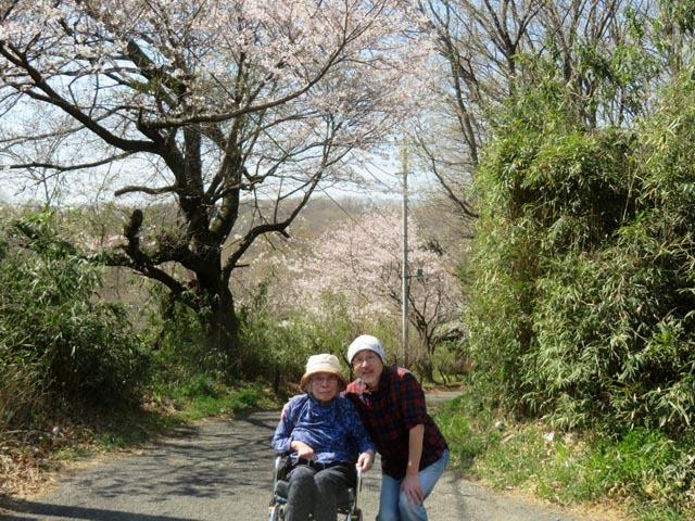 桜散歩_e0133780_21350696.jpg