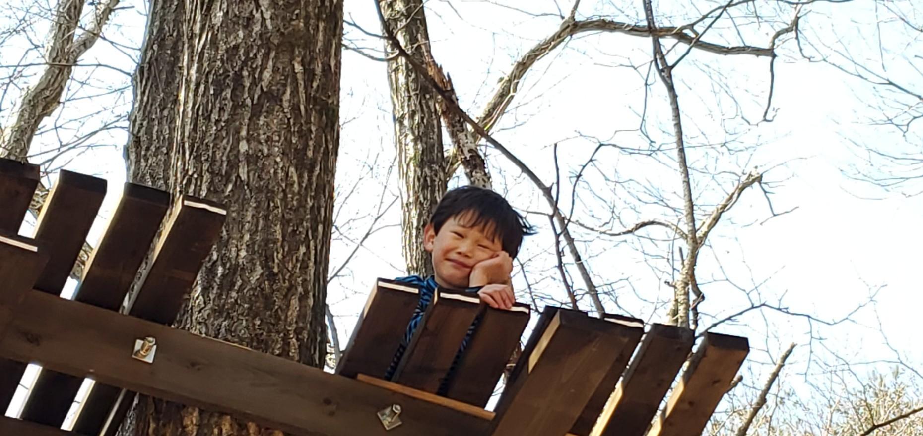 森の対面セッションのご案内_f0006208_13430520.jpg