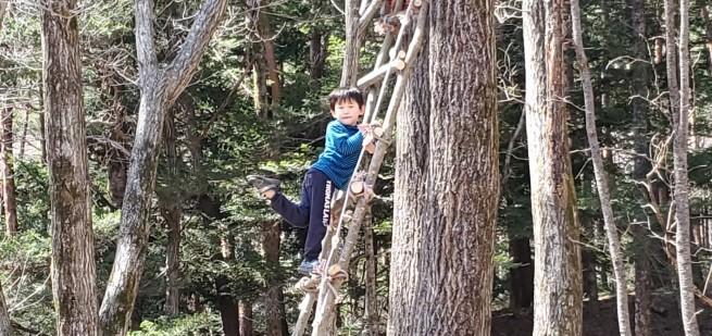 森の対面セッションのご案内_f0006208_13432208.jpg