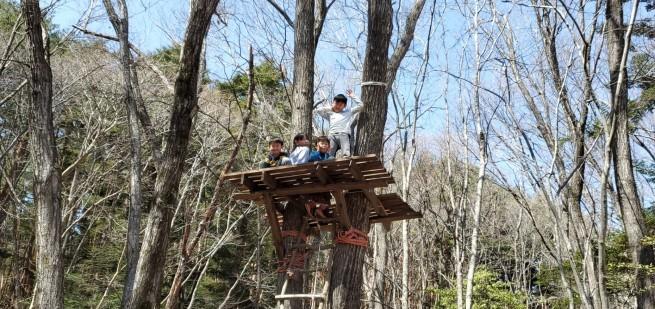 森の対面セッションのご案内_f0006208_13435034.jpg