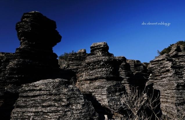 化石の森の春_f0315034_12250213.jpeg