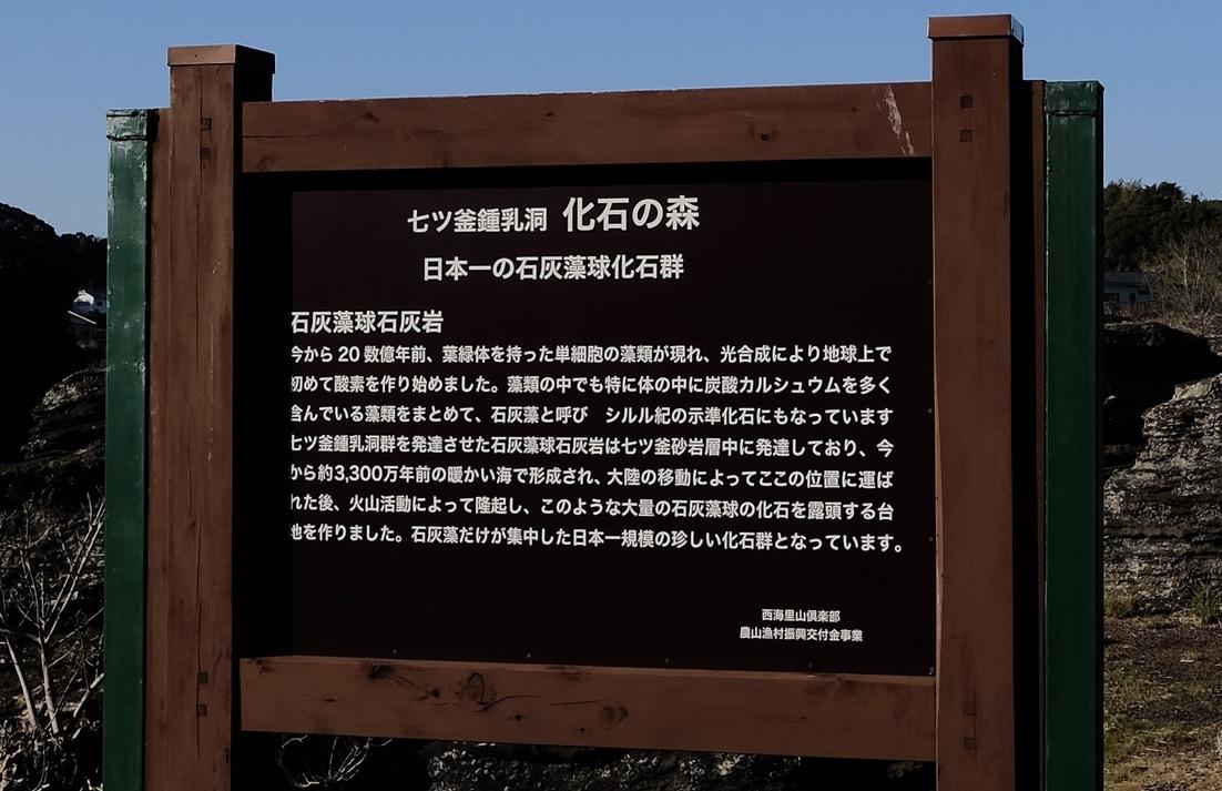 化石の森の春_f0315034_12291307.jpeg