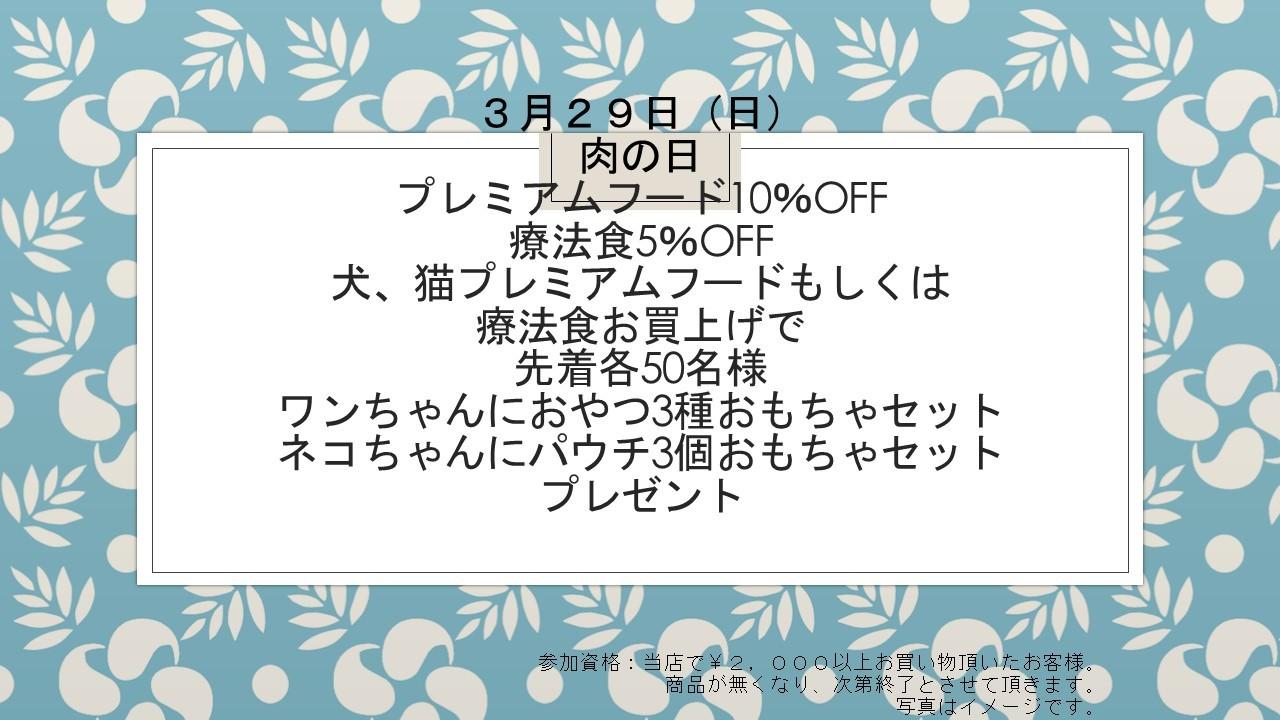 200327 スプリングセール&肉の日イベント告知_e0181866_10093353.jpg