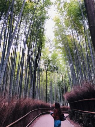 京都旅④~嵯峨野はひっそりとしてました_e0078071_14495375.jpg