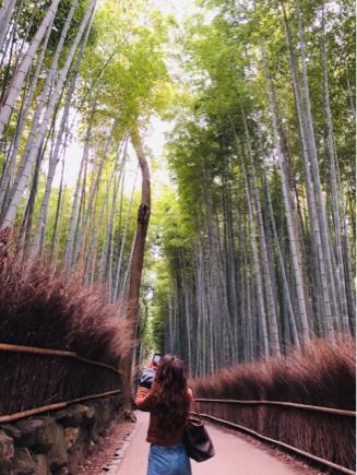 京都旅④~嵯峨野はひっそりとしてました_e0078071_14495412.jpg