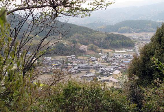 桜雨(さくらあめ)_b0145296_18283017.jpg