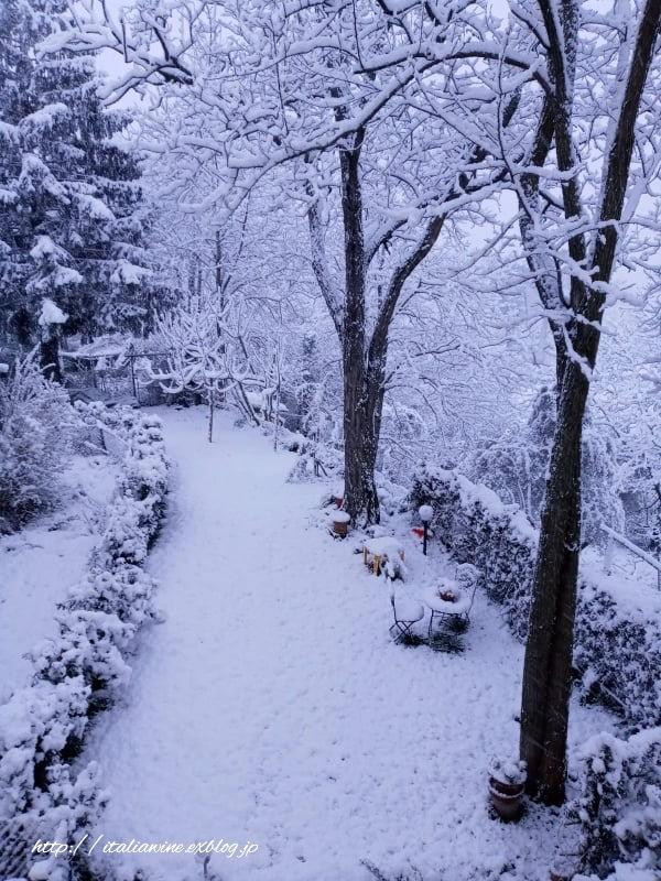 トスカーナの田舎に雪が降りました_d0219019_17445791.jpg