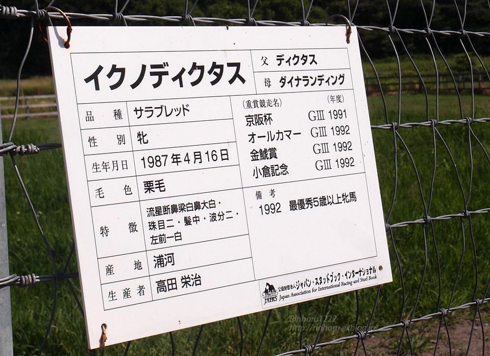 2017.8.6 五丸農場☆イクノディクタス【Ikuno Dictus】_f0250322_1722327.jpg