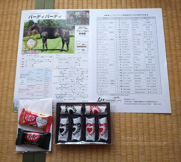 2020.2.12 レックススタッド種牡馬展示会(番外編)_f0250322_17462133.jpg