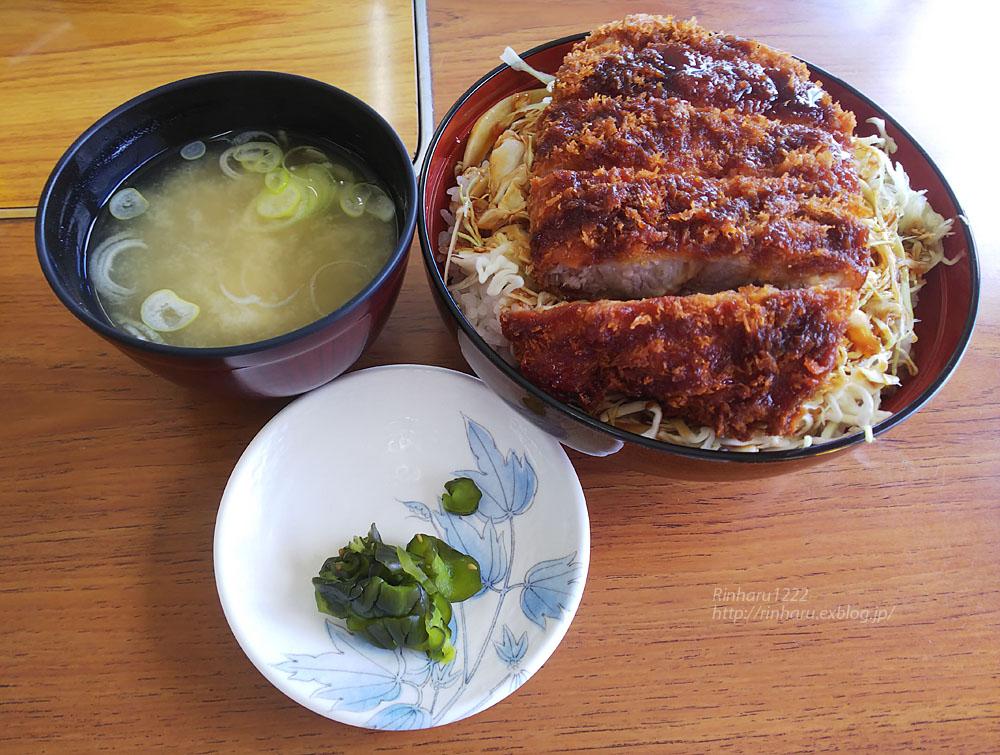 2020.3.15 東北サファリパーク☆三元豚のソースカツ丼_f0250322_21163082.jpg