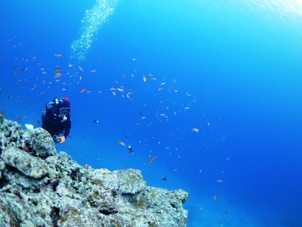 海の中はキレイだね~♪_a0189838_10410084.jpg