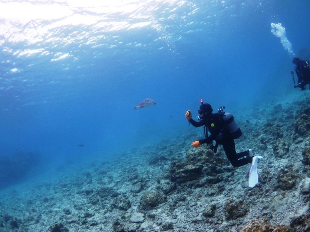 海の中はキレイだね~♪_a0189838_10412325.jpg