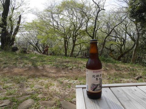 揃って葉桜、展望台周辺は7~8分咲き3・28六国見山夫婦桜now_c0014967_17374978.jpg