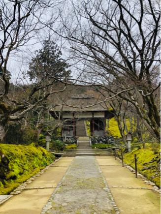 京都旅④~嵯峨野はひっそりとしてました_e0078071_16092869.jpg