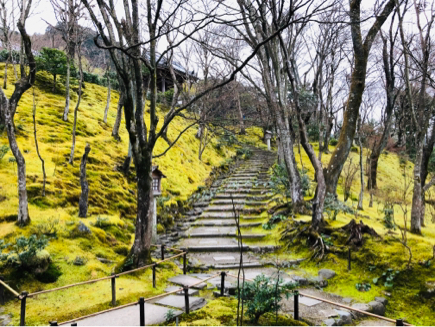 京都旅④~嵯峨野はひっそりとしてました_e0078071_16092871.jpg