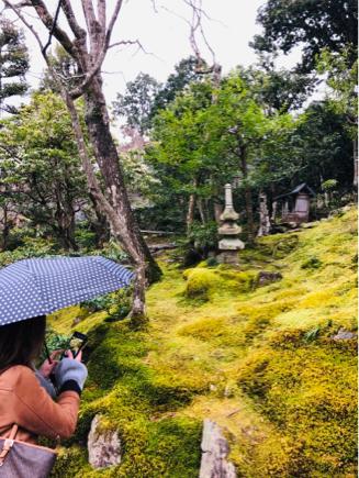 京都旅④~嵯峨野はひっそりとしてました_e0078071_16092974.jpg