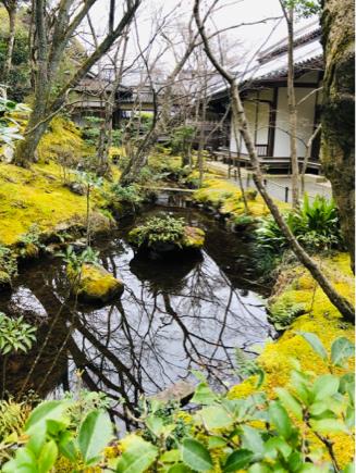 京都旅④~嵯峨野はひっそりとしてました_e0078071_16093202.jpg