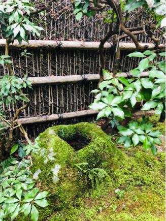 京都旅④~嵯峨野はひっそりとしてました_e0078071_16101358.jpg