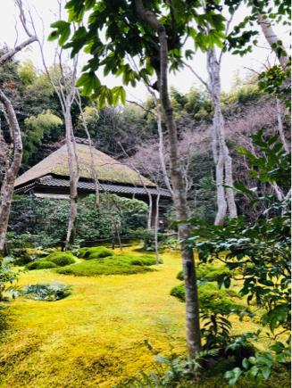 京都旅④~嵯峨野はひっそりとしてました_e0078071_16125925.jpg