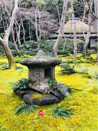 京都旅④~嵯峨野はひっそりとしてました_e0078071_16130011.jpg