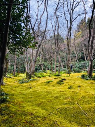 京都旅④~嵯峨野はひっそりとしてました_e0078071_16130246.jpg
