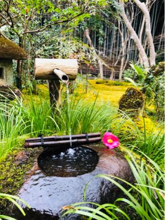 京都旅④~嵯峨野はひっそりとしてました_e0078071_16130308.jpg