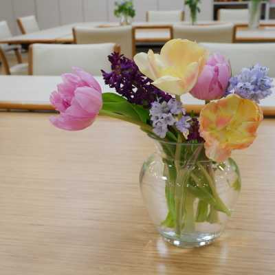 オークリーフ(絵画教室の花15)_f0049672_17012221.jpg