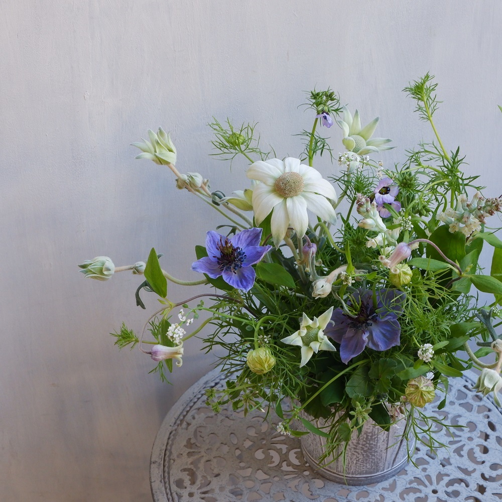 オークリーフ(青い花で・・)_f0049672_17550872.jpg