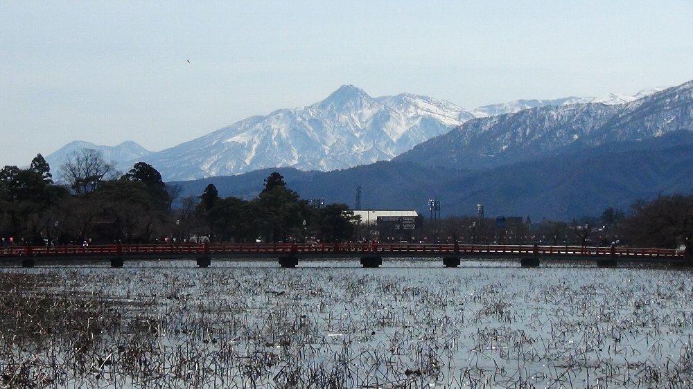 高田城址公園の桜!_e0065084_13595622.jpg