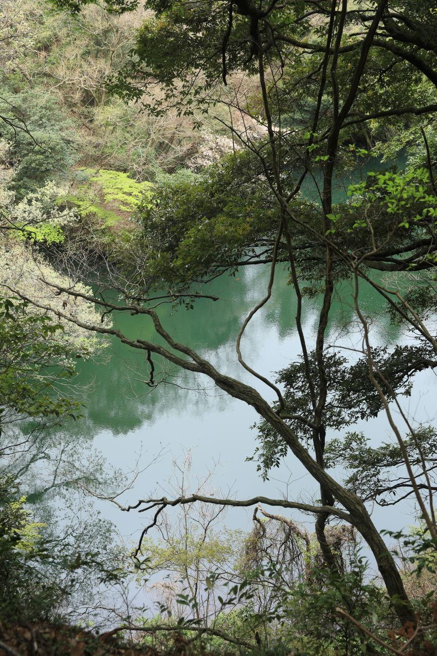 鎌倉の海と山散歩♪_b0275998_15431377.jpg