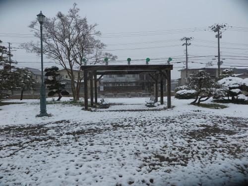 重文本館の昼下がり、「彼岸過ぎまで七雪」2020.3.29_c0075701_14193641.jpg