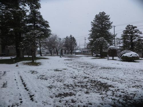 重文本館の昼下がり、「彼岸過ぎまで七雪」2020.3.29_c0075701_14195365.jpg