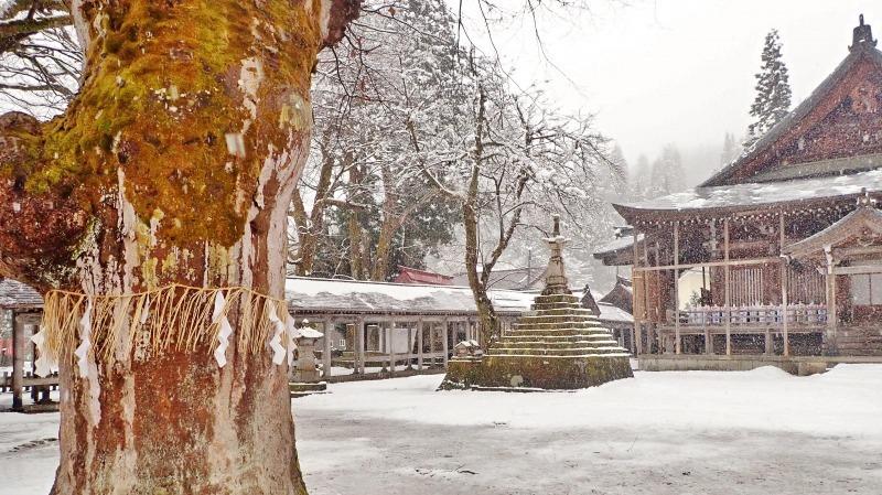 もう春なのに雪が!_c0336902_14070632.jpg