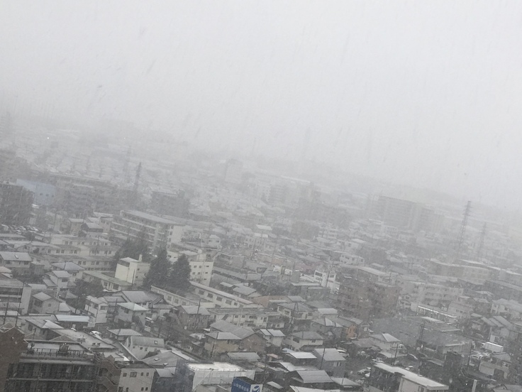 朝7時 雨が雪にかわりました @神奈川県北部_c0212604_794253.jpg