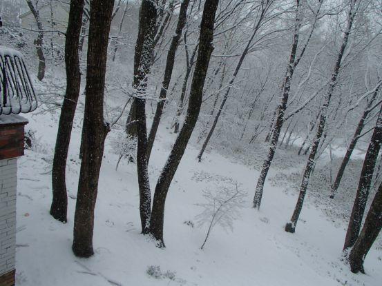 全天候ウオーキング_f0064906_15202572.jpg