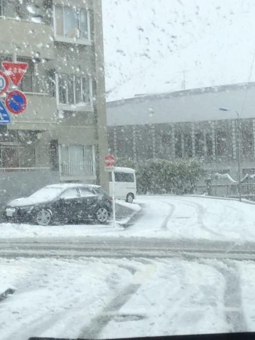 雪降りましたさん_b0067012_18172808.jpeg