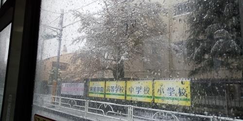 コロナ自粛と雪を「結婚とは何か」を考える良い機会に_b0255217_09030268.jpg