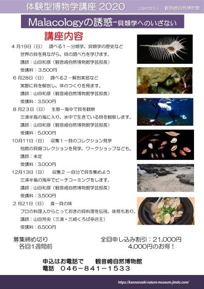 体験型博物学講座2020 ~Malacologyの誘惑~貝類学へにいざない~ _a0386621_13301939.jpg