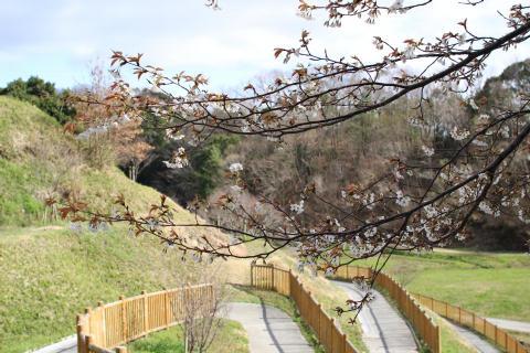 あいな里山公園_e0069822_1738592.jpg