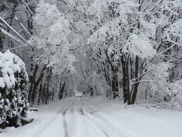 追記あり:今シーズン1の降雪!交通情報要確認!!(2020年3月29日)_b0174425_09111845.jpg