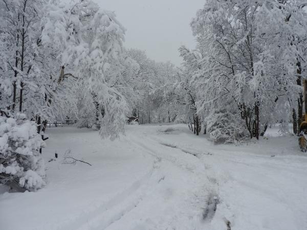 追記あり:今シーズン1の降雪!交通情報要確認!!(2020年3月29日)_b0174425_09120994.jpg